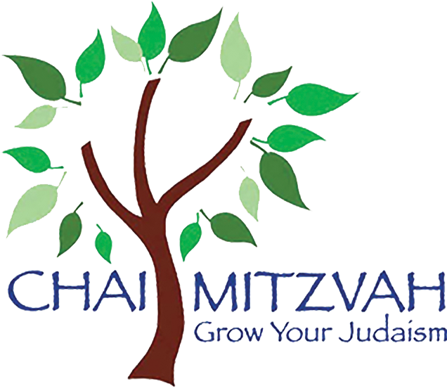 Chai Mitzvah – Indy Overview